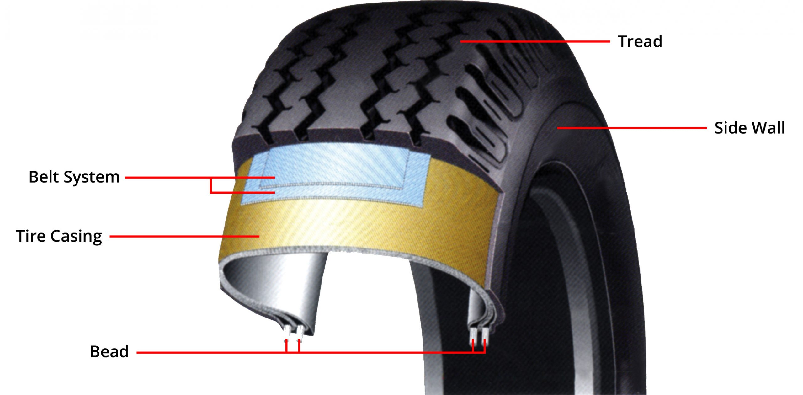 Tire Structure Diagram