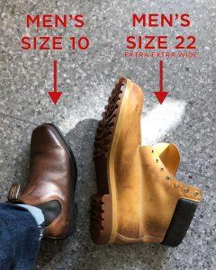 Shaq Shoe Comparison